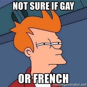 Futurama Fry - not sure if gay or french