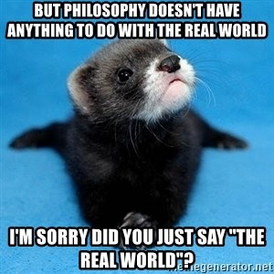 "Philosophy Major Ferret - But Philosophy doesn't have anything to do with the real world i'm sorry did you just say ""the Real world""?"