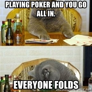 Poker Cat - playing poker and you go all in. everyone folds
