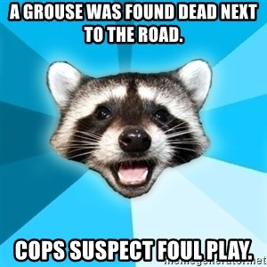 Lame Pun Coon - A grouse was found dead next to the road. Cops suspect foul play.