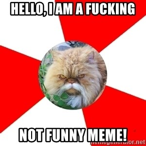 Diabetic Cat - hello, i am a fucking not funny meme!