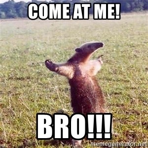 Anteater - come at me! bro!!!