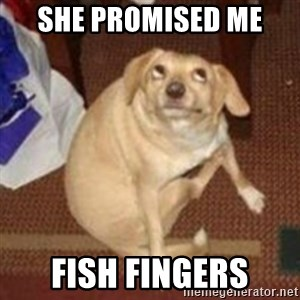 Oh You Dog - ShE promised me  Fish fingers