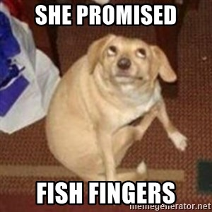 Oh You Dog - She promised Fish fingers