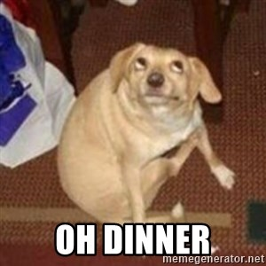 Oh You Dog - OH DINNER
