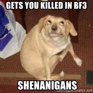 Oh You Dog - gets you killed in bf3  shenanigans