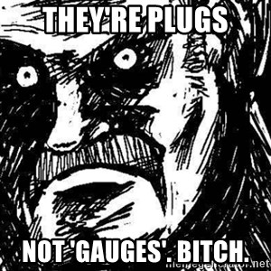STANKIN - they'RE PLUGS Not 'Gauges'. bitch.