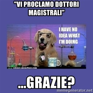 "I don't know what i'm doing! dog - ""Vi proclamo dottori magistrali"" ...grazie?"