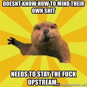 grumpy beaver - doesnt know how to mind their own shit needs to stay the fuck upstream..