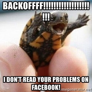 angry turtle - BACKOFFFF!!!!!!!!!!!!!!!!!!!!! i don't read your problems on facebook!