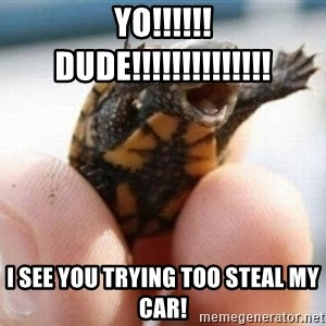angry turtle - yo!!!!!! dude!!!!!!!!!!!!!! i see you trying too steal my car!
