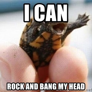 angry turtle - I CAN rOCK AND BANG MY HEAD