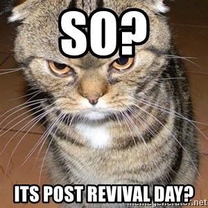 angry cat 2 - So? Its post revival day?