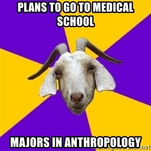 Premed Goat - plans to go to medical school majors in anthropology