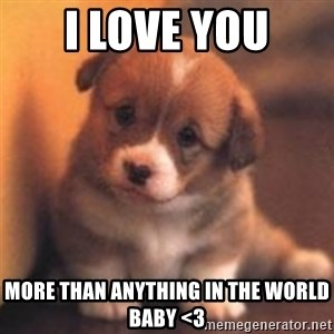 cute puppy - i love you more than anything in the world baby <3