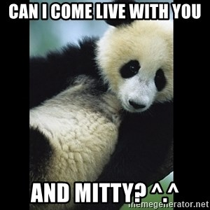 I love you panda - Can i come live with you and mitty? ^.^