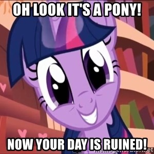Twilight MLP FIM - oh look it's a pony! now your day is ruined!
