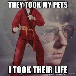 Karate Kyle - They took my pets I took their life