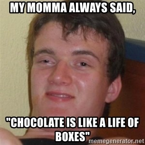 "Stoner Guy - My momma always said, ""Chocolate is like a life of boxes"""