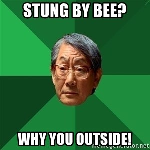 High Expectations Asian Father - stung by bee? why you outside!