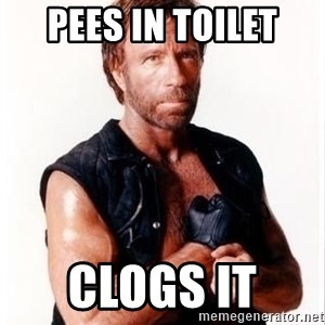Chuck Norris Meme - pees in toilet clogs it