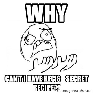 WHY SUFFERING GUY 2 - why can't i have kfc's    secret recipe?!