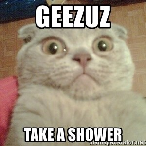 GEEZUS cat - geezuz take a shower