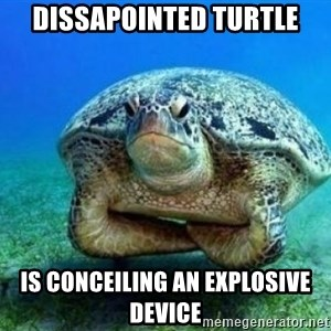 disappointed turtle - dissapointed turtle is conceiling an explosive device