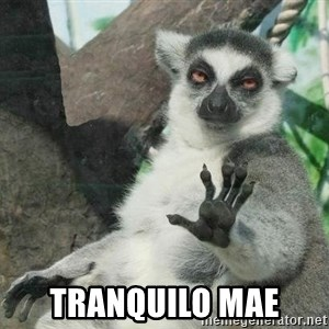 Not Today Lemur - tranquilo mae