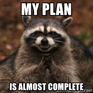 evil raccoon - my plan is almost complete