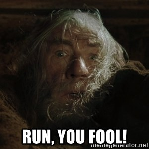 gandalf run you fools closeup - Run, you fool!