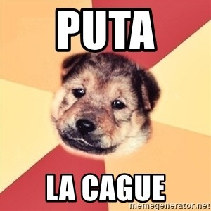 Typical Puppy - PUTA  LA CAGUE