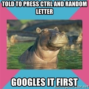 Skeptical hippo - told to press ctrl and random letter googles it first