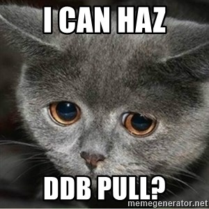 Sad Cute Cat - I can haz ddb Pull?