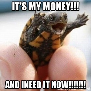 angry turtle - It's my money!!! And ineed it now!!!!!!!