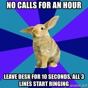 Reception Rabbit - No calls for an hour Leave desk for 10 seconds, all 3 lines start ringing