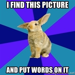 Reception Rabbit - i find this picture and put words on it