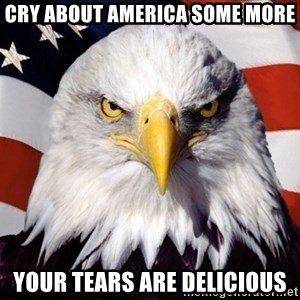 American Pride Eagle - cry about america some more your tears are delicious