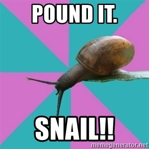 Synesthete Snail - Pound it. Snail!!
