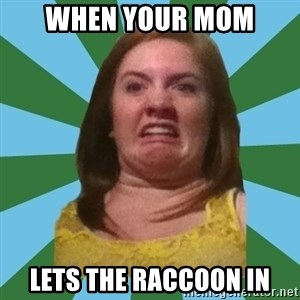 Disgusted Ginger - when your mom lets the raccoon in