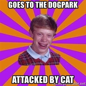 Unlucky Brian Strikes Again - Goes to the Dogpark Attacked by Cat