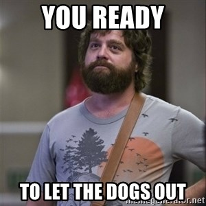 Alan Hangover - You rEady To let the Dogs out