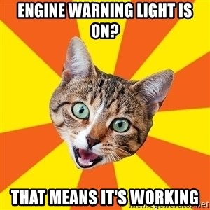 Bad Advice Cat - Engine warning light is on? that means it's working