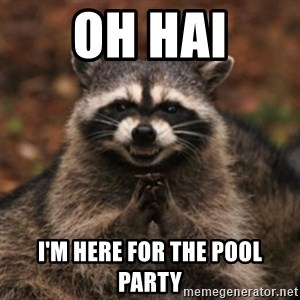 evil raccoon - Oh hai I'm here for the pool party