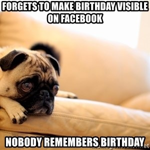 Sorrowful Pug - Forgets to make birthday visible on facebook nobody remembers birthday