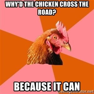 Anti Joke Chicken - why'd the chicken cross the road? because it can