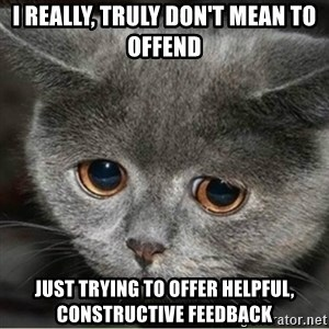 Sad Cute Cat - I really, TRULY don't mean to offend just trying to offer helpful, CONSTRUCTIVE FEEDBACK