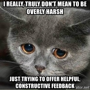 Sad Cute Cat - I REALLY, TRULY DON'T MEAN TO BE OVERLY HARSH JUST TRYING TO OFFER HELPFUL, CONSTRUCTIVE FEEDBACK