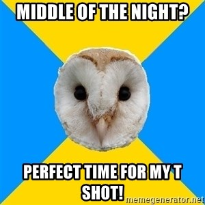 Bipolar Owl - middle of the night? perfect time for my t shot!