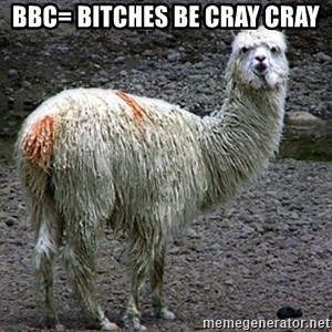 Drama Llama - BBC= Bitches Be Cray Cray